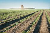 Tractor fertiliza cultivos — Foto de Stock