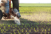 Tractor fertilizes crops — Foto Stock