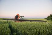 трактор распыления на поле — Стоковое фото