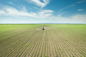 Tractor spraying soy — Stockfoto