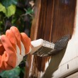 Maintaining of wooden surfaces — 图库照片