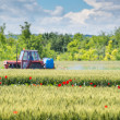 Tractor spraying wheat — Stock Photo #27032503