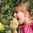 Little girl eat apple — Foto Stock #29610681