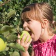 Little girl eat apple — Stock Photo #29610681