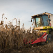 Combine harvesting crop corn — Stock Photo #32987227