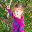 Little girl picked apples — Foto de Stock