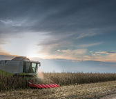 Combine harvesting crop — Stock Photo