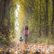 Girl with her dog — Stock Photo