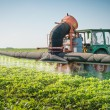 Stock Photo: Tractor spraying pesticides