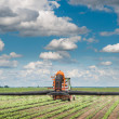 Stock Photo: Tractor spraying crop field