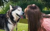 Girl and her husky — Stock Photo