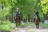 Girls on horseback riding — Stock Photo