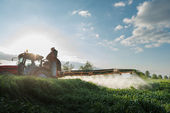 spraying wheat in spring — Stock Photo