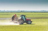 Tractor spraying  — Stock Photo
