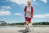 Senior woman and  her dog — Stock Photo