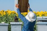 пчеловод рабочей — Стоковое фото