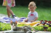 Children and cat — Stock Photo