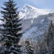 Snowy mountain — Stock Photo #13136478