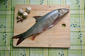Fresh fish on the table (barbel) — Stock Photo