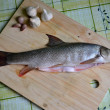 Stock Photo: Fresh fish on table (barbel)