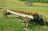 Old wagon now as an decoration of village farm — Stock Photo
