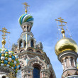 "SAINT PETERSBURG, RUSSIA - JULY 2013: A part of ""Church of the Savior on Blood"". — Stock Photo"