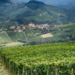 Barolo - Italy — Stock Photo #38064397