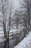 Wintry Scenery-1 — Stock Photo