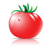 Fresh tomato — Stock Vector