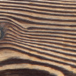 Larch tree wood texture - Stok fotoraf