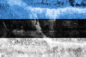 Estonia Flag painted on grunge wall — Foto Stock