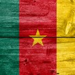Cameroon Flag painted on old wood plank background — Stock Photo