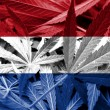 Netherlands Flag on cannabis background. Drug policy. Legalization of marijuana — Stock Photo