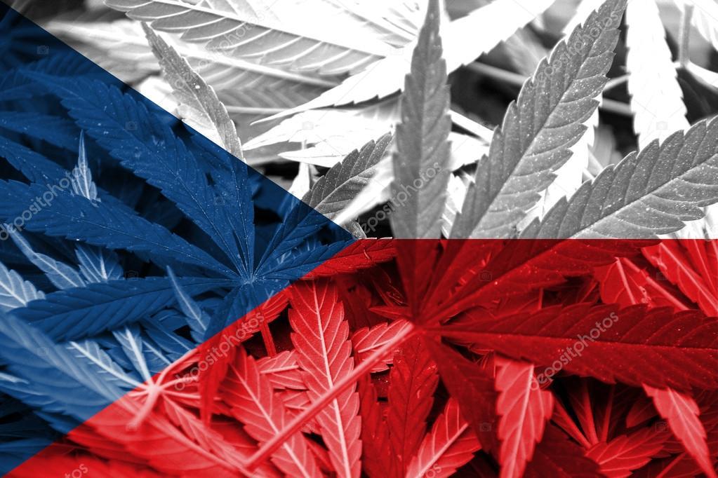 Bandiera della repubblica ceca su sfondo di cannabis for Repubblica politica