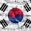 South Korea Flag painted on grunge wall — Stock Photo