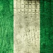 Nigeria Flag painted on luxury crocodile texture — Stock Photo