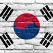 South Korea Flag painted on old brick wall — Stock Photo