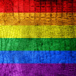 Rainbow Flag painted on luxury crocodile texture — Stock Photo
