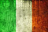 Ireland Flag painted on luxury crocodile texture — Stock Photo