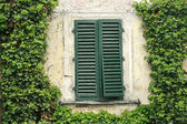 Antique window in Italy — Stock Photo
