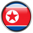 North Korea Flag glossy button — Stock Photo