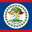 Belize Flag — Stock Photo #38216823