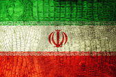 Iran Flag painted on luxury crocodile texture — Stock Photo
