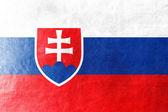 Slowakije vlag geschilderd op leder texture — Stockfoto