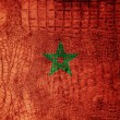 Stock Photo: Morocco Flag painted on luxury crocodile texture