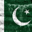 Pakistan Flag painted on grunge wall — Stock Photo #38585439