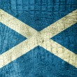 Stock Photo: Scotland Flag painted on luxury crocodile texture