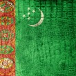 Stock Photo: TurkmenistFlag painted on luxury crocodile texture