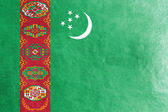 Turkmenistan Flag painted on leather texture — Стоковое фото