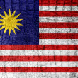 Stock Photo: MalaysiFlag painted on luxury crocodile texture